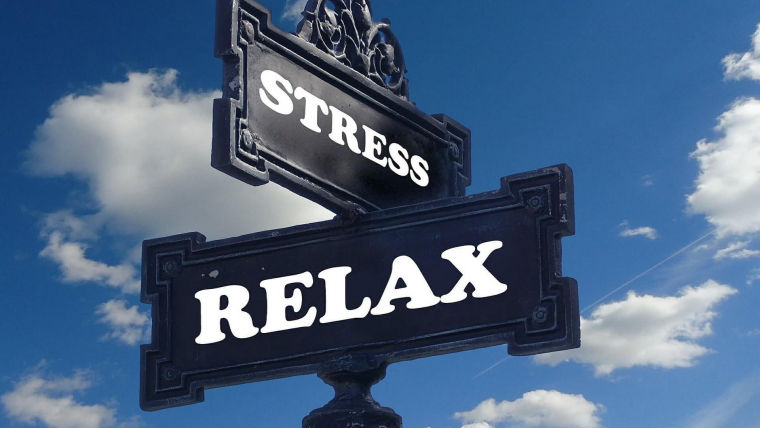 Anxiety and Chronic Stress